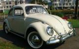 Classic 1963 VW Beetle BuG Sedan