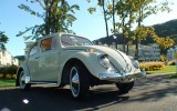 Classic 1964 VW Beetle BuG Metal Sunroof