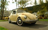 Tweety the 1971 VW Super Beetle Semi Automatic BuG