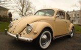 The 1956 VW Oval Window BuG Lil ButterCup!