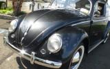Classic VW BuGs 1954 Ragtop Beetle Featured in VolksAmerica Magazine