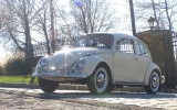 Classic VW BuGs 1967 Euro Beetle Sedan SOLD!