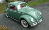 Vintage 1956 Agave Green Oval Window Beetle Bug Sedan For Sale!