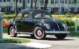 "*1954 VW Oval Window Beetle BuG* ""Lil Buddy"""