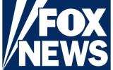 Classic VW Bugs & Chris Vallone hits Fox News, Take 2!